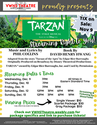 Tarzan the Stage Musical poster with streaming information