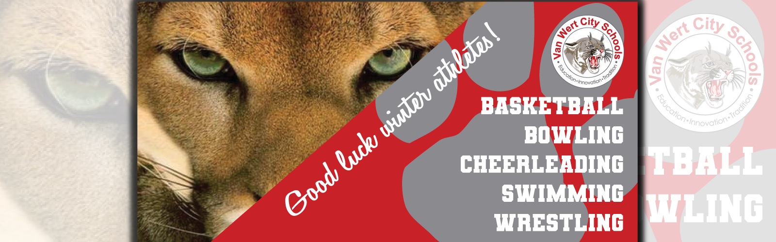 Good luck winter sports - basketball, bowling, cheerleading, swimming, wrestling with a picture of a cougar